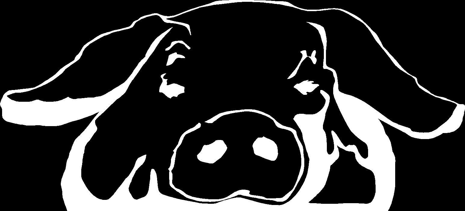 Porchetta da Mario